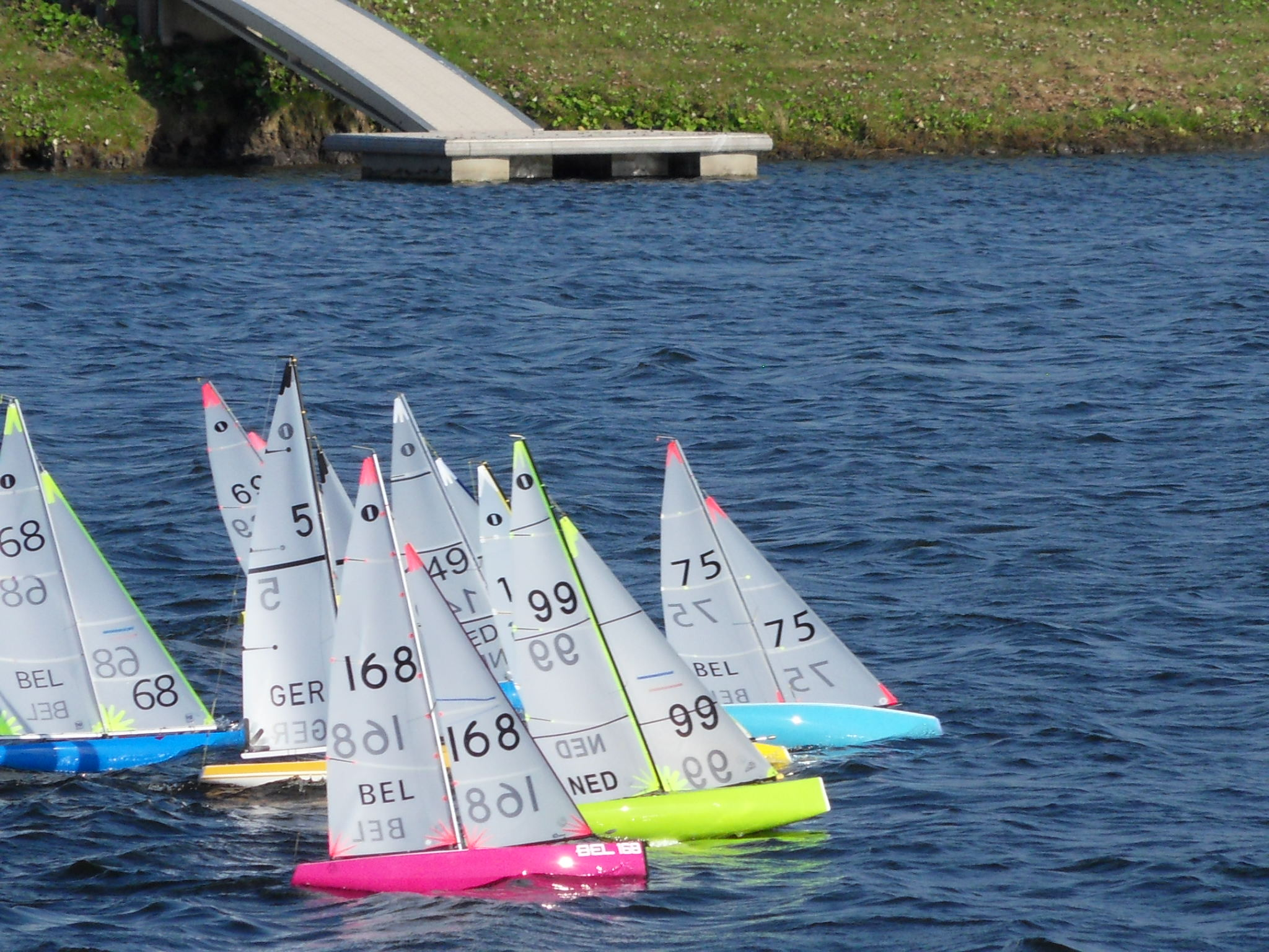 Blubberplas regatta